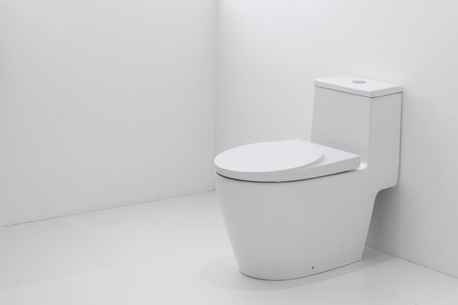 How to flush toilet without water